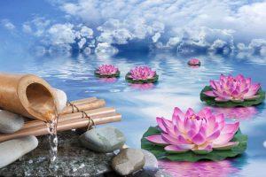 L'arte di tenere casa in modo Zen